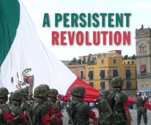 A Persistent Revolution