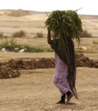 woman carrying crops
