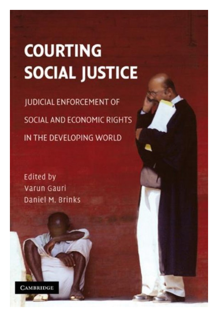 Courting Social Justice book cover