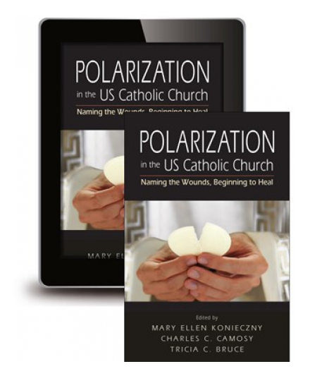 Polarization in the US Catholic Church: Naming the Wounds, Beginning to Heal by Mary Ellen Konieczny