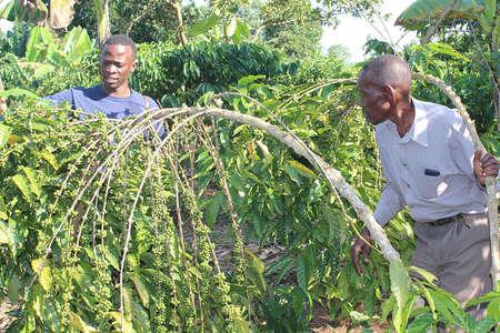 Trevor Lwere with a coffee farmer in Uganda